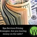 Spa Services Pricing Strategies: Are you leaving money on the table?
